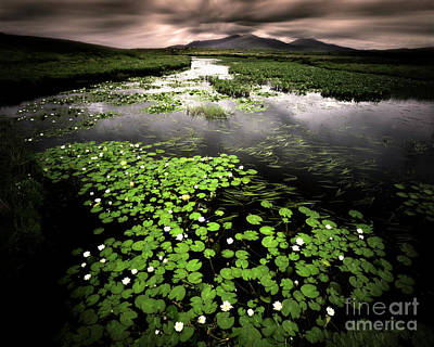 Photograph - Loch Chairnain by Edmund Nagele