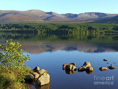 Photograph - Loch Morlich In September by Phil Banks