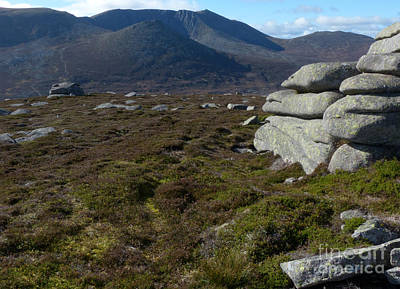 Photograph - Lochnagar From Conachcraig by Phil Banks