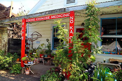 Locke Chinese Medicine Art Print by Joyce Dickens