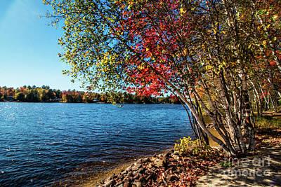 Photograph - Locke Lake, N H by Mim White