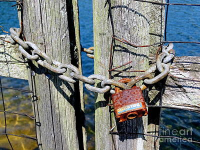 Photograph - Locked Gate by Ed Weidman