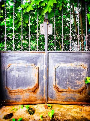 Photograph - Locked Gate With Trees by Silvia Ganora