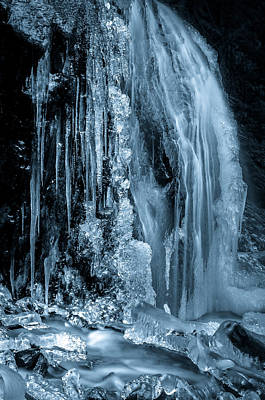 Photograph - Locked In Ice by Brad Koop