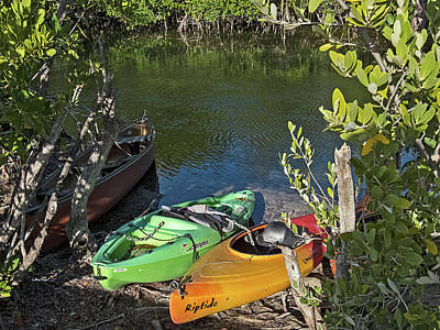 Photograph - Locked Up Kayaks In The Mangroves by Bob Slitzan