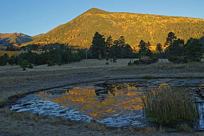 Photograph - Lockett Meadow Reflection by Tom Daniel