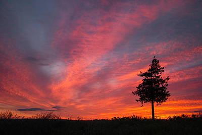 Locust Sunset Photograph - Locust Beach by Ryan McGinnis