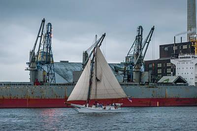 D700 Photograph - Locust Point Sailing by Jim Archer
