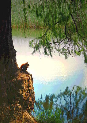 Photograph - Lodi Lake Red Squirrel by Joyce Dickens