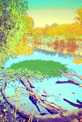 Photograph - Lodi Lake Watercolor Four by Joyce Dickens