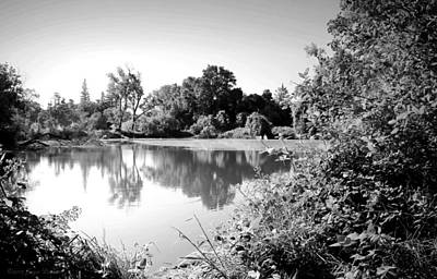 Photograph - Lodi Pig Lake Reflections B And W by Joyce Dickens