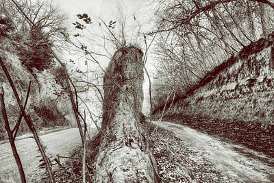 Photograph - Loess Hills - Dirt Roads - Sepia by Nikolyn McDonald
