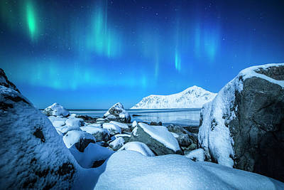 Photograph - Lofoten Aurora by Stefano Termanini