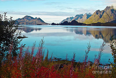 Lofoten Islands Art Print by Heiko Koehrer-Wagner