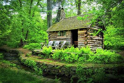 Log Cabin At Morris Arboretum Art Print