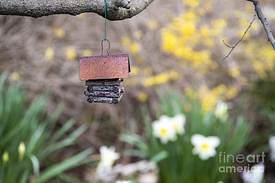 Photograph - Log Cabin Bird House by David Arment