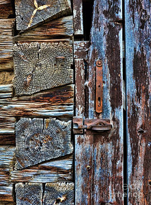 Log Cabin Door Art Print by Jill Battaglia