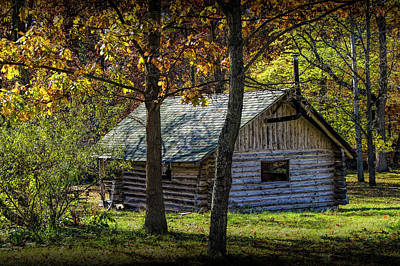 Photograph - Log Cabin Home In The Woods by Randall Nyhof