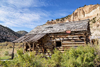 Photograph - Log Cabin In Indian Canyon by Kathleen Bishop