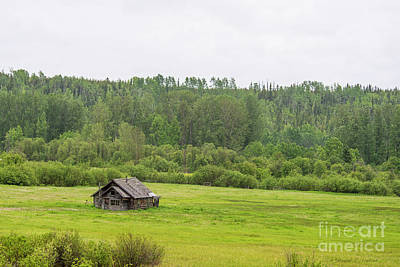 Photograph - Log Cabin In The Meadow by David Arment