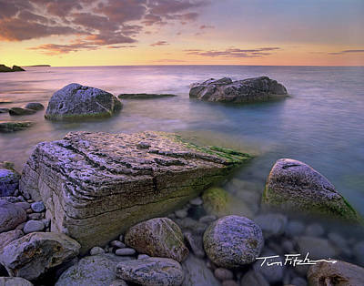 Photograph - Log Dump Beach by Tim Fitzharris