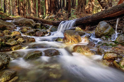 Log Falls On Limekiln Creek Art Print