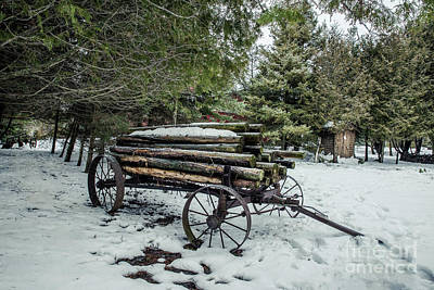 Nikki Vig Royalty-Free and Rights-Managed Images - Log Hauler in Winter by Nikki Vig