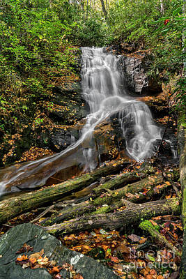 All You Need Is Love - Log Hollow Falls Waterfall by Michael Shake