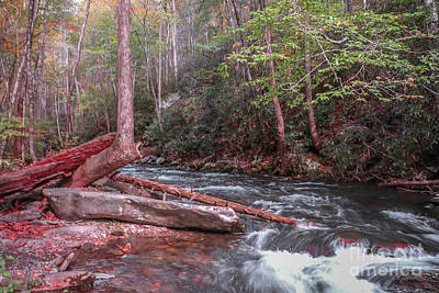 Photograph - Log In Stream by Tom Claud