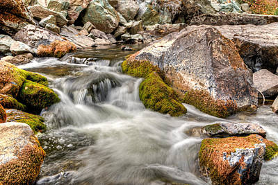 Logan Creek, Montana 2 Art Print