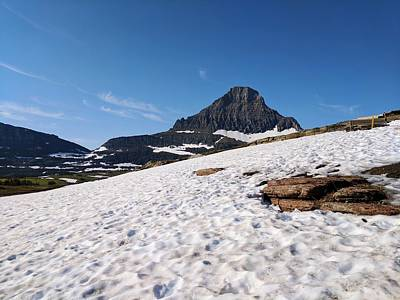 Olympic Sports - Logan Pass and Reynolds Mountain by William Slider