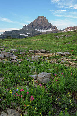Photograph - Logan Pass In Summer by Morris McClung