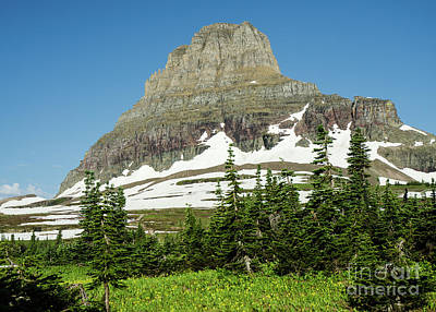 Photograph - Logan Pass by Nick Boren