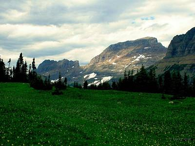 Photograph - Logan's Pass by Tracey Vivar
