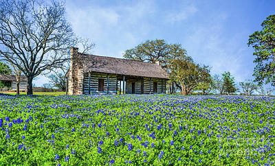 Rural Photograph - Log Cabin And Bluebonnets by Tod and Cynthia Grubbs