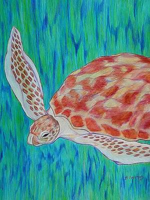 Drawing - Loggerhead Sea Turtle by Beth Akerman