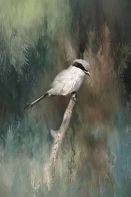 Photograph - Loggerhead Shrike by Kim Hojnacki