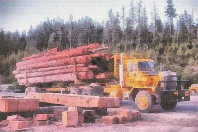 Photograph - Logging by John Winner