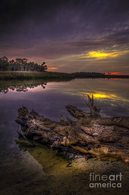 Ocean Vista Photograph - Logging Out by Marvin Spates