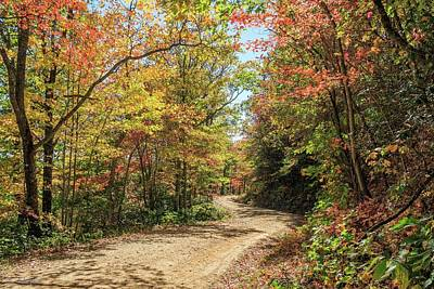 Photograph - Logging Road In October by Brian Shepard