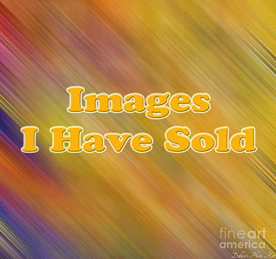Photograph - Logo - Images I Have Sold Gallery by Debbie Portwood