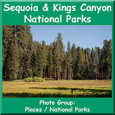 Photograph - Logo Sequoia Kings Canyon National Parks by NaturesPix