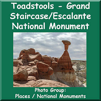 Photograph - Logo Toadstools Grand Staircase Escalante National Monument by NaturesPix