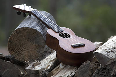 Photograph - Logpile Ukulele by Keith May