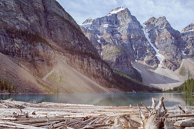 Photograph - Logs At Lake Moraine by Patricia Hofmeester