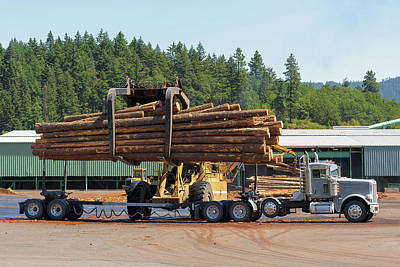 Wall Art - Photograph - Logs Unloading Off Truck In Lumber Yard by David Gn