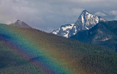 Photograph - Loki Rainbow by Cathie Douglas