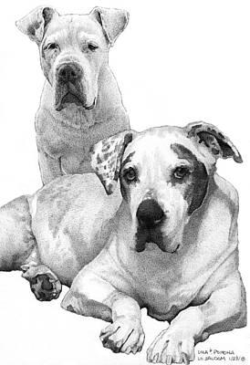 Pitbull Drawing - Lola And Pomona by Lorraine Zaloom
