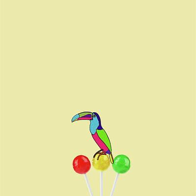 Minimal Wall Art - Photograph - Lolipop Bird by Caterina Theoharidou