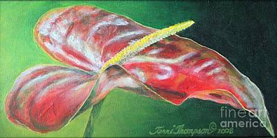 Painting - Lone Anthurium by Terri Thompson